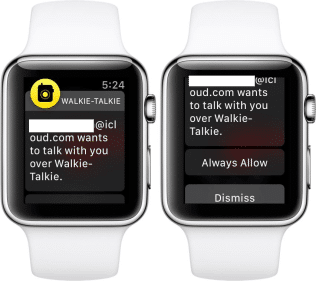 walkie talkie iPhone watch